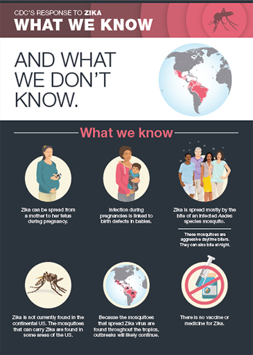 what-we-know-infographic
